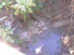 foto del  fosso ove scorrono liquami vari