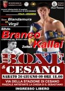 Boxe-Cesano-09